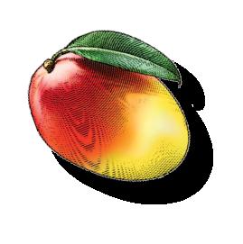 Briannas Organic Fruit
